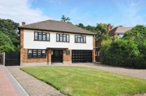 Detached property in Broadstrood, Loughton...