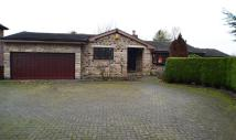 3 bedroom Detached Bungalow in Long Lane, Ackworth...