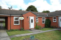 2 bed Semi-Detached Bungalow in Holly Court, Outwood...