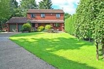 4 bed Detached house for sale in Willow Beck, Notton...