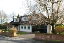 4 bedroom Detached Bungalow for sale in Hardwick Court...
