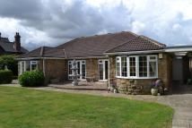Detached Bungalow for sale in Manygates Lane, Sandal...