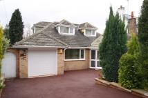 Detached Bungalow in Woodthorpe Park Drive...