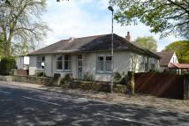 5 bed Detached Bungalow in The Balk, Walton...