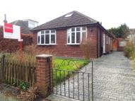 3 bed Bungalow in Hollytree Road, Plumley...