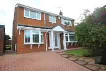 4 bedroom Detached home to rent in Greenvale, Bamford...