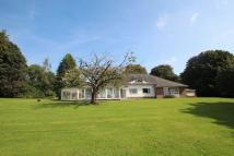 Detached Bungalow for sale in Crimble Lane, Bamford...
