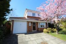 Detached property in Lawrence Close, Norden...