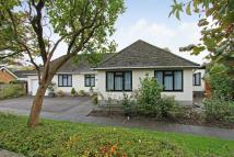 3 bed Detached Bungalow in The Grove...