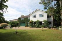 5 bedroom Detached property in Send