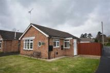 Detached Bungalow for sale in Moor Grove, Uttoxeter...