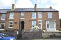 Milton Road Terraced property to rent