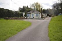 2 bed Bungalow to rent in New Haden Road, Cheadle...