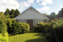 Detached Bungalow to rent in Mynydd Garnllwyd Road...