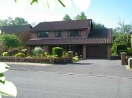 Detached property in Wernolau Road, Ammanford...