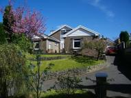 5 bedroom Detached Bungalow in Pinewood, Pontamman...