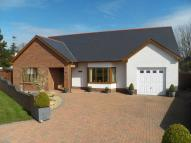 Detached Bungalow in Maes Y Dderwen, CARDIGAN...