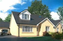 3 bedroom Detached Bungalow for sale in Dol Y Dintir, CARDIGAN...