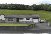 3 bed Detached Bungalow in Cwmdwyfran, Bronwydd...