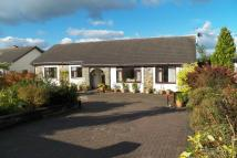 4 bedroom Detached Bungalow for sale in Rhydargaeau...