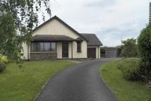 Detached Bungalow in Dol Y Dderwen, Llangain...