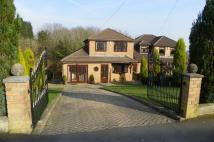 Bryngelli Park Detached house for sale