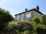 Detached Bungalow in Trewyddfa Road...