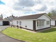 Withy Park Detached Bungalow for sale