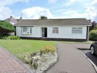 Detached Bungalow for sale in Withy Park, Bishopston...