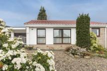 3 bed Bungalow in 32 Lade Braes...