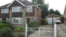 3 bedroom semi detached property to rent in Meadow Park Crescent...