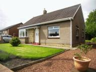 3 bed Detached Bungalow in North Broomhill, Morpeth