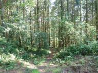 Land for sale in Afonwen, Mold, CH7