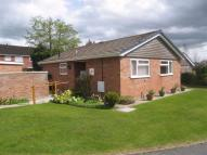 Bungalow to rent in Lime Close, Ellesmere...