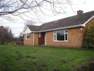 3 bedroom Bungalow to rent in Austcliffe Road...