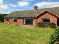 Bridgnorth Road Bungalow to rent