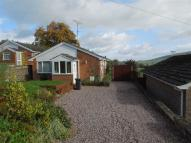 3 bed Bungalow to rent in Gungrog Hill, Welshpool...