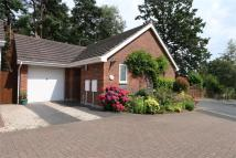 Detached Bungalow in Keepers Cottage...