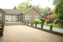 3 bed Detached Bungalow to rent in Hendon Avenue, Finchley...