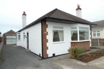 Detached Bungalow to rent in Shaun Drive, Rhyl