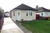 Detached Bungalow to rent in Rhuddlan, Abergele Road