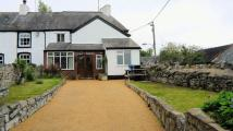 semi detached property to rent in Ffordd Penwylfa...