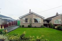 Detached Bungalow to rent in Byron Street, Trelwanyd