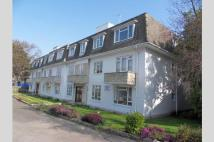 1 bed Apartment in Lilliput, BH14