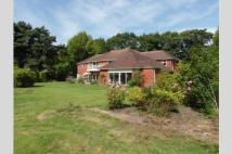 6 bed Detached house for sale in Ferndown, BH22