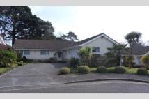 Bungalow in Canford Cliffs, BH13