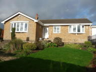3 bed Detached Bungalow in Robin Hill