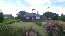 2 bedroom Detached Bungalow in The Firs Thorness Lane...