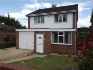 Detached house to rent in Sycamore Drive, Marlow...