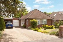 Bungalow for sale in Harwood Road, Marlow...